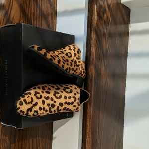 Steve Madden Shoes - Booties
